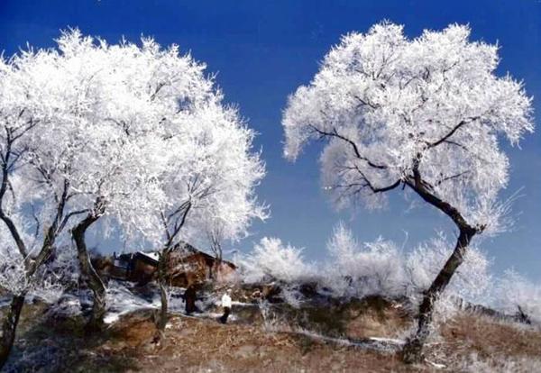 Photo  Image  U0026 Picture Of Jilin Rime Ice Snow Festival Visit